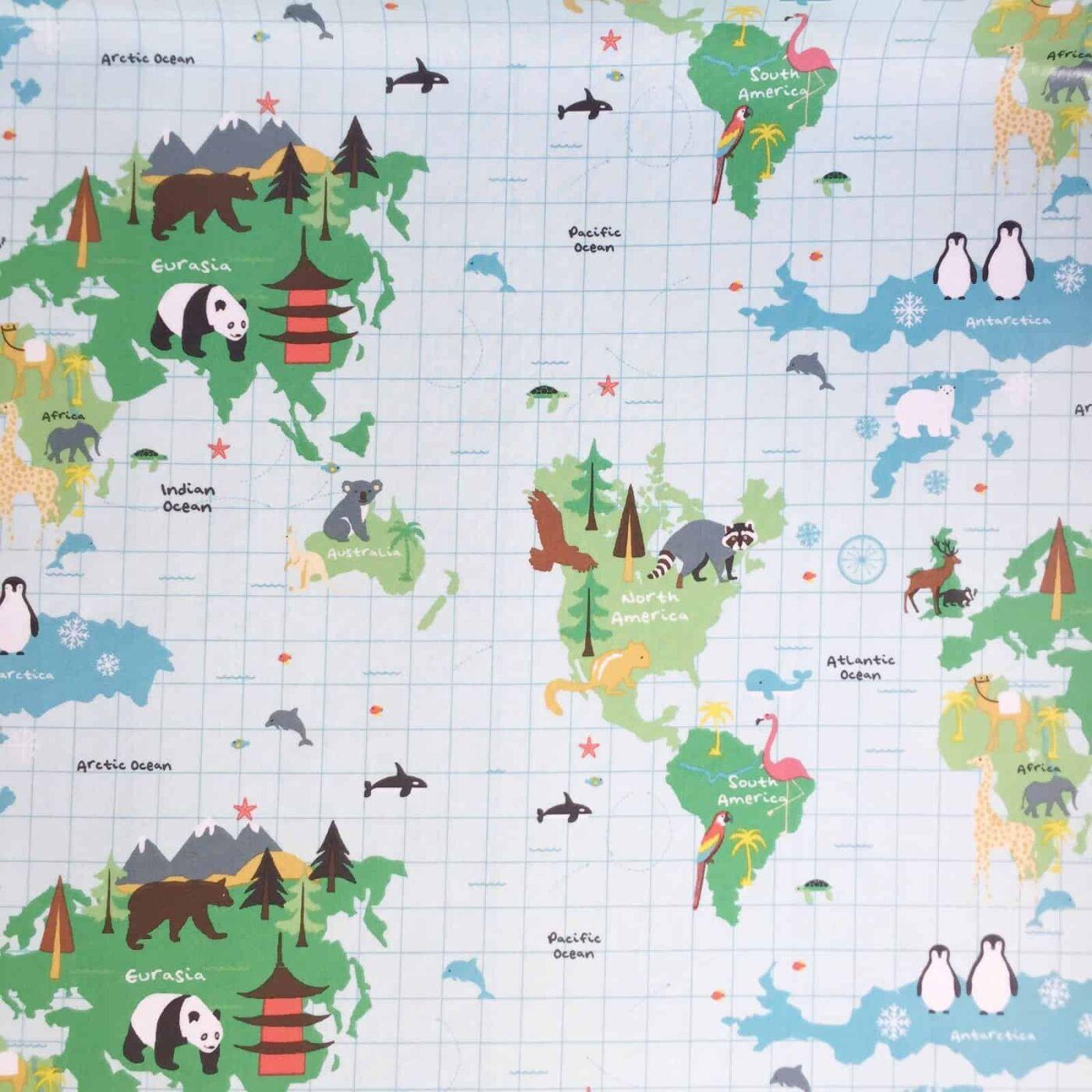 Fryett\'s Wachstuch World Map multi
